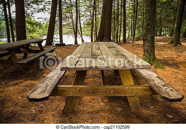 Mesa de picnic - csp21102599
