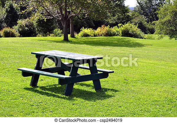 Una mesa de picnic - csp2494019