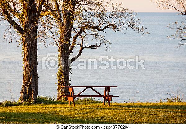 Mesa de picnic - csp43776294