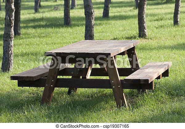 Mesa de picnic - csp19307165