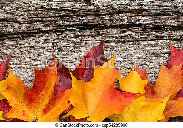 table bois, feuilles, érable, automne - csp54285900