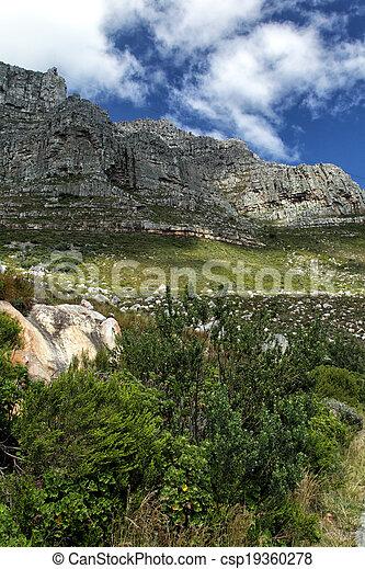 Table Mountain - csp19360278