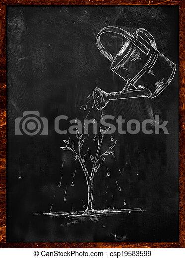 Tableau Noir Plante Arrosage Croquis