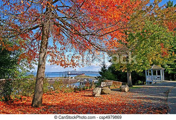 Tacoma, park - csp4979869