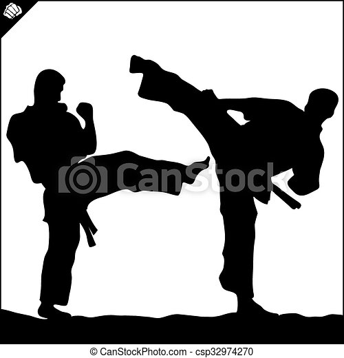 taekwondo karate fighting scene