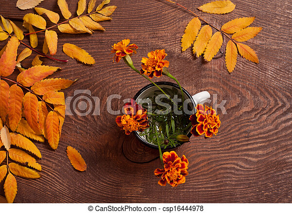 Tagetes flowers - csp16444978