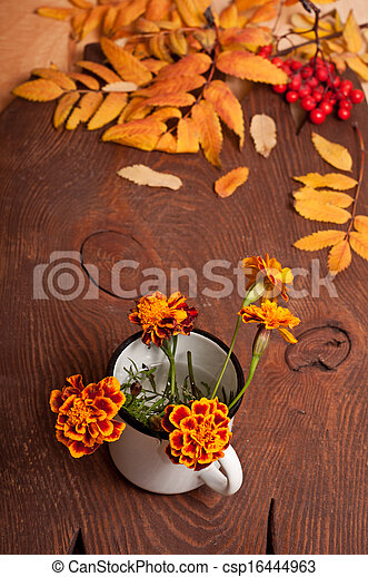 Tagetes flowers - csp16444963
