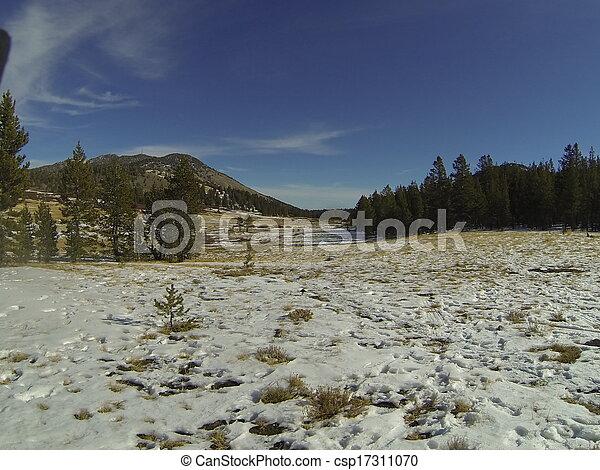 Tahoe California - csp17311070