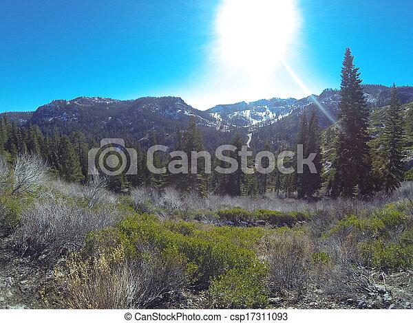 Tahoe California - csp17311093