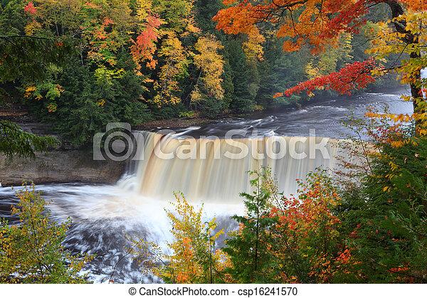 Tahquamenon Falls - csp16241570