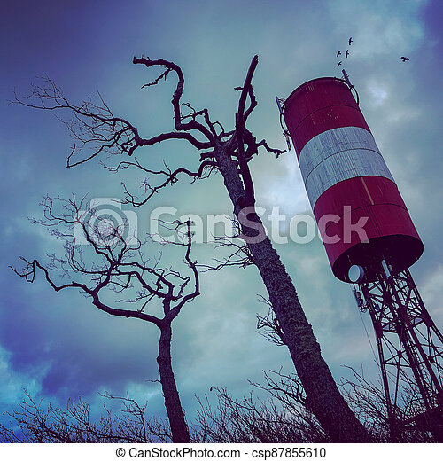Tall tower and dry trees against overcast sky - csp87855610
