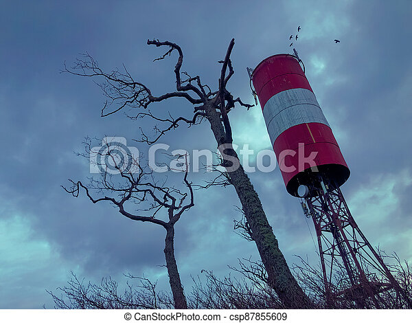 Tall tower and dry trees against overcast sky - csp87855609
