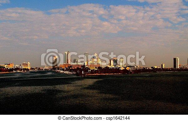 Tampa Skyline - csp1642144