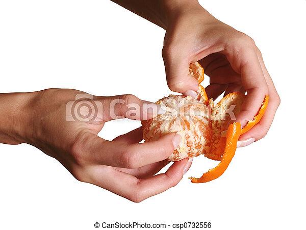 Tangerine - csp0732556