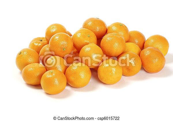 tangerine   - csp6015722