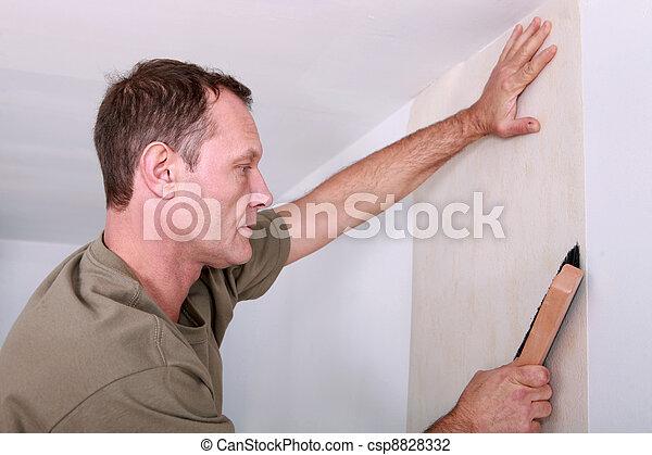 tapete, dekorateurin, hängender  - csp8828332