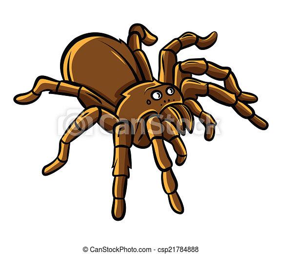 tarantula vector search clip art illustration drawings and eps rh canstockphoto com tarantula clipart red knee tarantula clipart