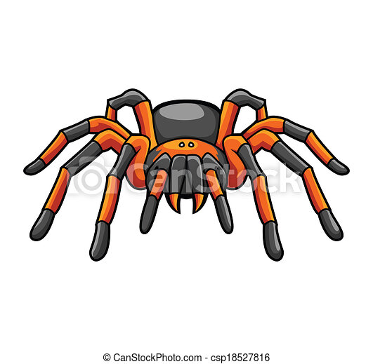 tarantula vector clip art search illustration drawings and eps rh canstockphoto com red knee tarantula clipart tarantula clipart