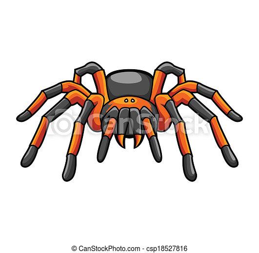 tarantula vector clip art search illustration drawings and eps rh canstockphoto com  red knee tarantula clipart