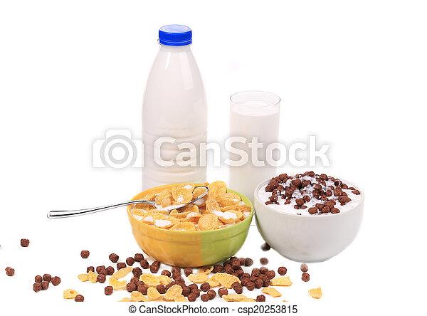 Tasty cereal breakfast for kids. - csp20253815