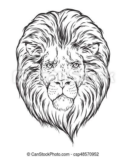 Tatouage Tete Illustration Sur Flash Isole Main Lion Vecteur Conception Fond Impression Dessine Blanc Ou