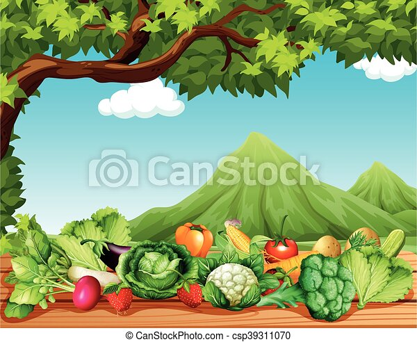 tavola, verdura, frutte - csp39311070