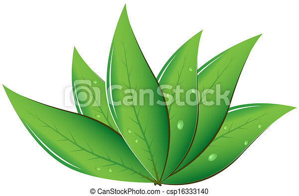 Tea leaves vector illustration eps vector search clip art tea leaves vector illustration thecheapjerseys Image collections