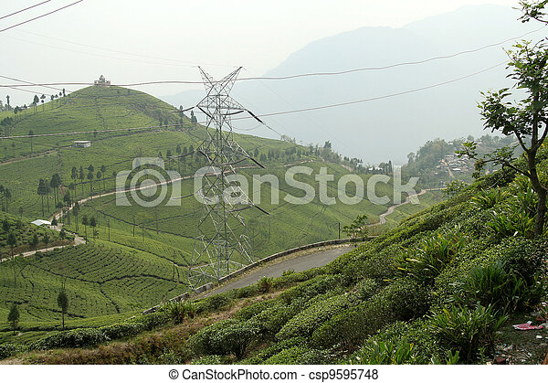 Tea plantation on mountain slope with roads and electric ...