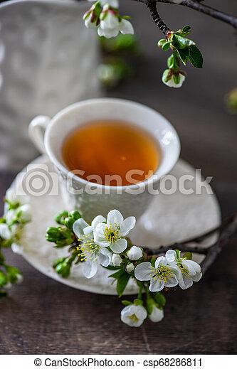 Tea time concept - csp68286811