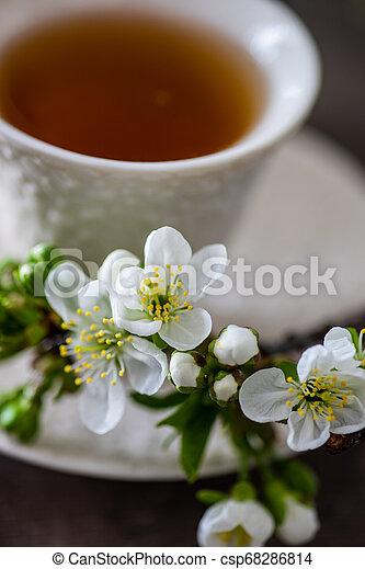 Tea time concept - csp68286814