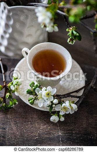 Tea time concept - csp68286789