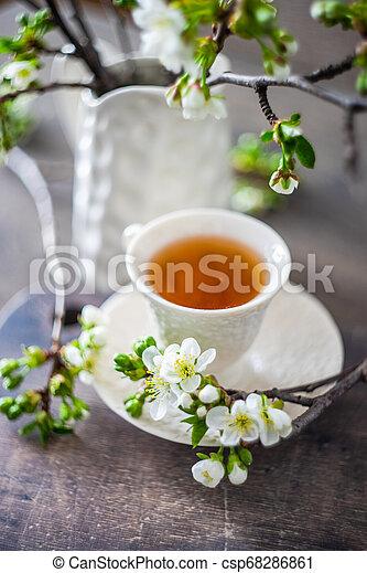Tea time concept - csp68286861