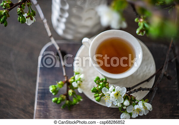 Tea time concept - csp68286852
