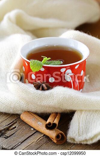 Tea with spices - cinnamon - csp12099950