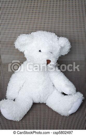 Teddy Bear - csp5802497