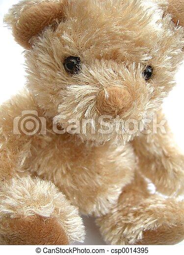 Teddy Bear - csp0014395