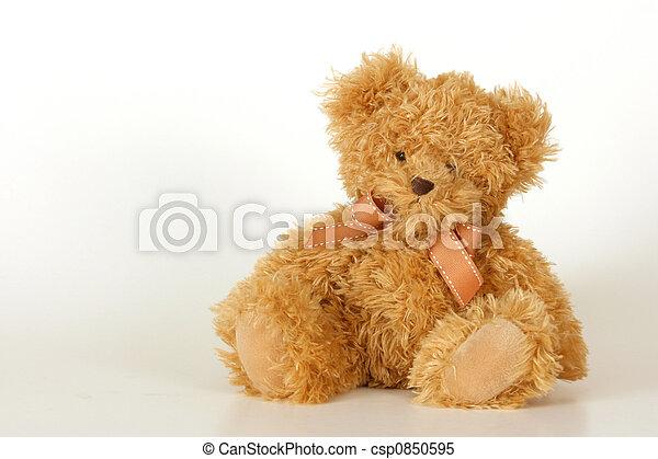 Teddy Bear - csp0850595