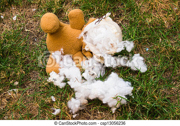 Teddy bear - csp13056236
