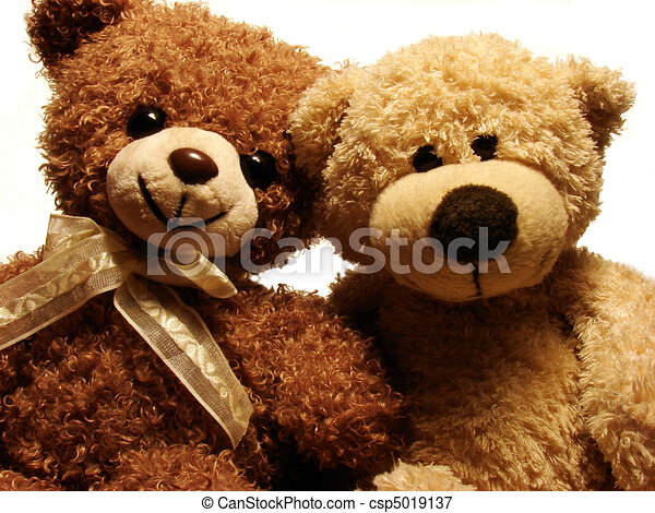 teddy bears - csp5019137