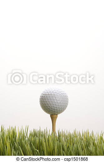 Golf ball on tee. - csp1501868