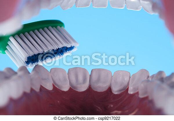 Teeth, Dental health care objects - csp9217022