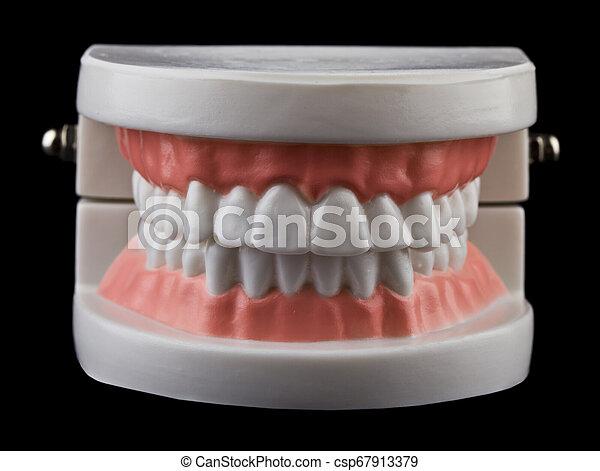 teeth isolated on black background - csp67913379