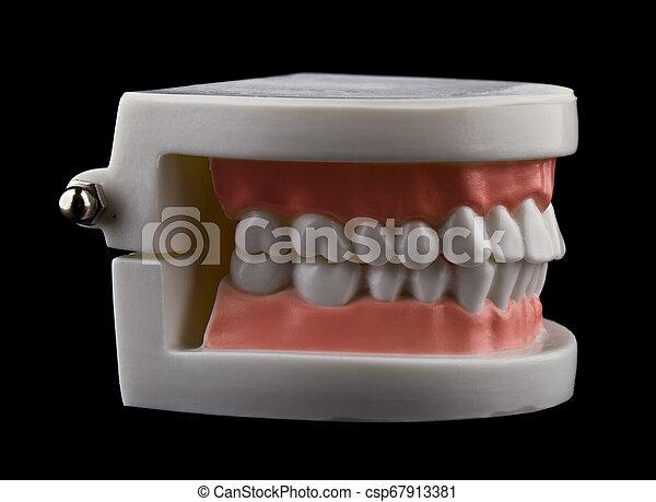 teeth isolated on black background - csp67913381