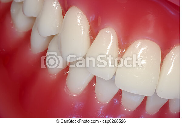 Teeth - csp0268526
