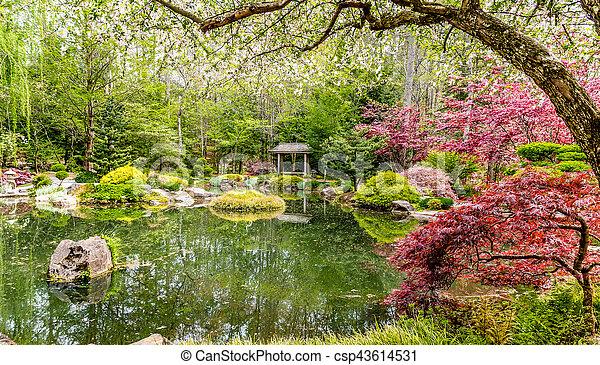 Teich Japanischer Garten Gelassen Ungefähr Japanisches Bäume