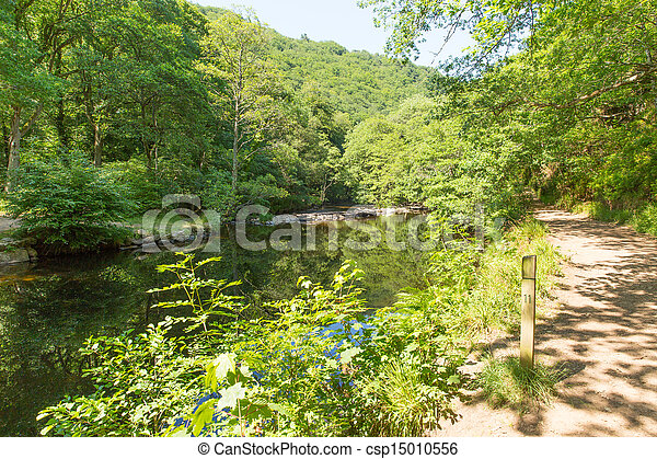 Dartmoor del puente de mando del río - csp15010556
