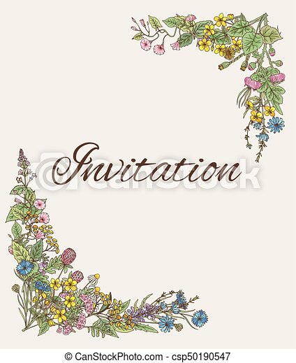 template for invitation card with decoration from hand drawn herbs