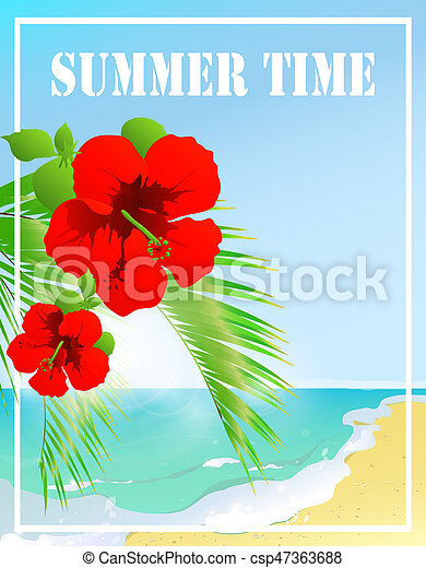 tempo verão, céu, estrela mar - csp47363688