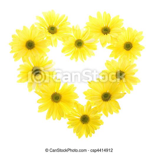 Ten yellow daisy flowers in heart shape ten yellow daisy flowers ten yellow daisy flowers in heart shape csp4414912 mightylinksfo