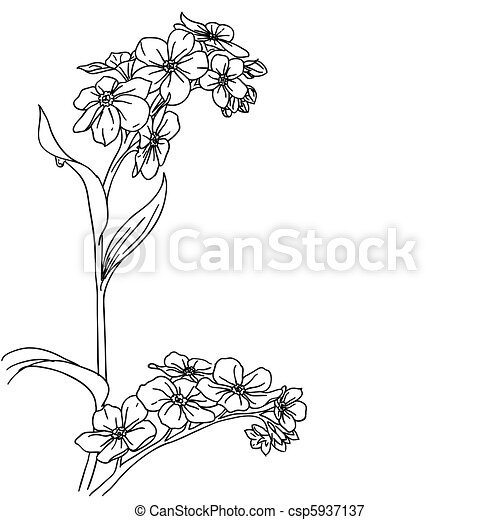 tender twig blossoming orchids on a light background  - csp5937137